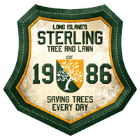 Sterling Tree Crest