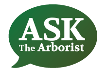Ask The Arborist logo