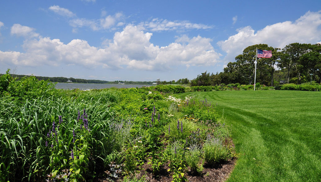 Long Island Property Gallery Tree Care Waterfront