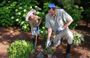Certified Tree Specialists